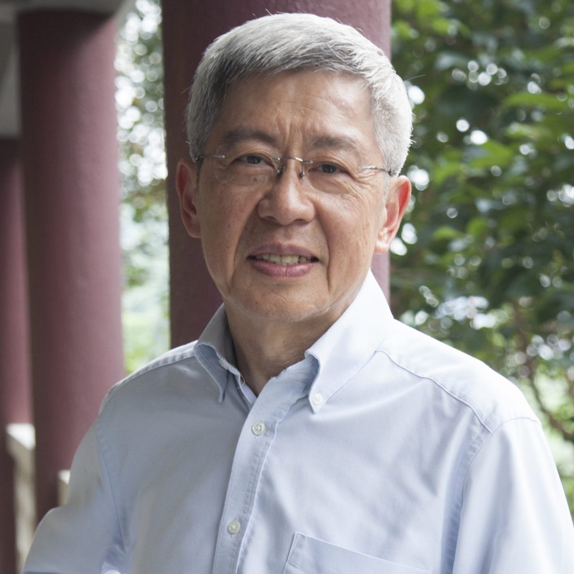 The Review 2014 Prof Cheng Kai Ming